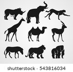Stock vector set of african animals rhino elephant cheetah giraffe camel gazelle zebra lion and gorilla 543816034