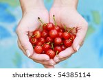 Woman offers freshly picked cherries. Shallow DOF. - stock photo