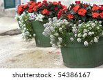 Wooden Flower Pots With...