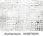 distressed overlay texture of... | Shutterstock .eps vector #543874045