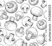 champignon mushroom hand drawn... | Shutterstock .eps vector #543888325