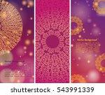 ethnic   colorful henna mandala ... | Shutterstock .eps vector #543991339