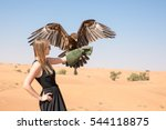 Greater Spotted Eagle  Clanga...