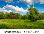 summer time landscape... | Shutterstock . vector #544143544