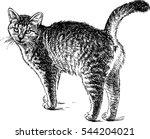 walking cat sketch | Shutterstock .eps vector #544204021