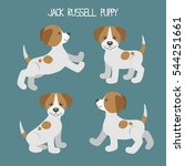vector set with jack russell... | Shutterstock .eps vector #544251661