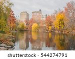 woods and autumn foliage in... | Shutterstock . vector #544274791