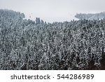beautiful winter landscape with ... | Shutterstock . vector #544286989