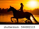 Sunset Silhouette Of Horse...