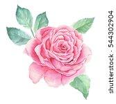 watercolor flower | Shutterstock . vector #544302904