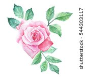 watercolor flower | Shutterstock . vector #544303117