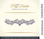 new calligraphic page divider... | Shutterstock .eps vector #544341994