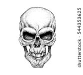 graphic skull. dotwork.isolated ... | Shutterstock .eps vector #544353625