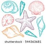 seashell  sea shell  starfish... | Shutterstock . vector #544363681