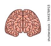 human brain organ isolated icon ... | Shutterstock .eps vector #544378915