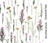 floral pattern with pink and... | Shutterstock . vector #544449784