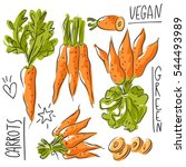 set illustration with carrot... | Shutterstock .eps vector #544493989