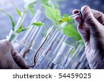 Scientist Holding Samples Of...