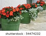 Wooden Flower Pots With White...