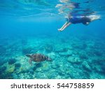 Snorkel And Green Turtle...