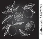 hand drawn vector illustration  ... | Shutterstock .eps vector #544790275