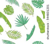 tropical palm  monstera ... | Shutterstock .eps vector #544831201