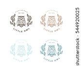 Hipster Line Art Owl Logo...