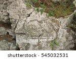Oolitic Limestone Outcrop ...