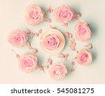 pink roses over pastel... | Shutterstock . vector #545081275