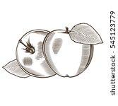 apples in vintage style | Shutterstock . vector #545123779