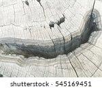 tree stump cut  wooden... | Shutterstock . vector #545169451