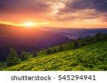 colorful summer sunrise... | Shutterstock . vector #545294941