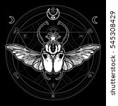 winged bug. mystical circle.... | Shutterstock .eps vector #545308429