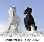 Stock photo white and black horses 54540052