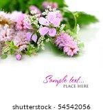 bouquet of wild flowers on a... | Shutterstock . vector #54542056