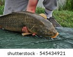 Angler With Carp Fishing Trophy