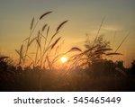 landscape fantastic sunset on... | Shutterstock . vector #545465449