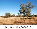 Australian Outback Landscape...