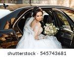 dark haired bride jewelry head... | Shutterstock . vector #545743681