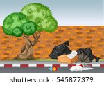 scene with trash under the tree ... | Shutterstock .eps vector #545877379