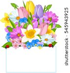 colorful fresh spring flowers... | Shutterstock .eps vector #545943925