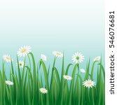 grass and white flowers border ... | Shutterstock .eps vector #546076681