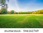 landscape of grass field and... | Shutterstock . vector #546162769