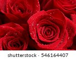 Close Up Of Red Roses And Water ...