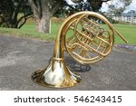 French Horn In Front Of A Park