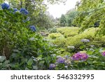 summers day at national...   Shutterstock . vector #546332995