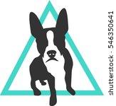 Stock vector boston terrier or french bulldog branding and logo concept 546350641