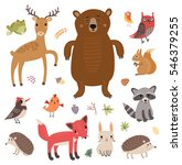 Forest animals. Vector set. Collection of cute characters.   Shutterstock vector #546379255