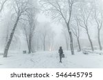 A Snow Blizzard Foggy Morning...