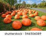 grand rapids  michigan  ...   Shutterstock . vector #546506089